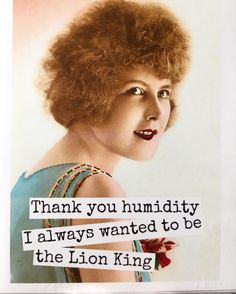 Thank you humidity. I always wanted to be the Lion King. That's hilarious! Salon Quotes, Hair Quotes, Retro Humor, Vintage Humor, Retro Funny, Funny Vintage, Vintage Comics, I Love To Laugh, Make You Smile