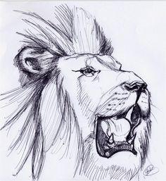 LION ROARING SKETCH by ~noahstormcrow on deviantART