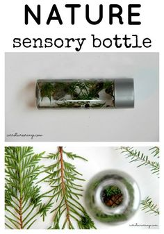 Want to bring nature discovery to your baby? Check out this nature sensory bottle for inspiration! Montessori Toddler, Montessori Activities, Infant Activities, Learning Activities, Activities For Kids, Kindergarten Activities, Sensory Table, Baby Sensory, Sensory Bins