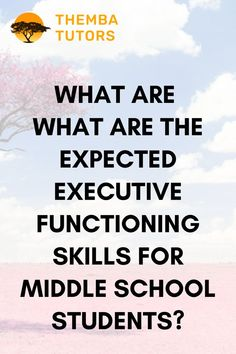 Problems with executive functioning can manifest as soon as students begin attending school. Need an executive functioning coach? Contact Themba Tutors! Do You Have Difficulties and Problems Learning English? Our Executive function coaches are ready to help you! Call: (917) 382-8641, Text: (833) 565-2370 Email: info@thembatutors.com (we respond to email right away!).