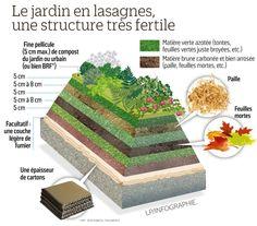 Air Plants, Cactus Plants, Culture En Lasagne, Farming Technology, Potager Bio, Veggie Patch, Food Security, Eating Organic, Green Garden