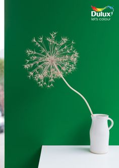 Use a bright #emerald #green such as Dulux Emerald Delight 3 to make white #home #accessories pop.