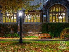 A Bench Outside a Row of Colorful Stained Glass Windows, in the Bright Light of a Streetlamp Photographic Print by Babak Tafreshi at Art.com