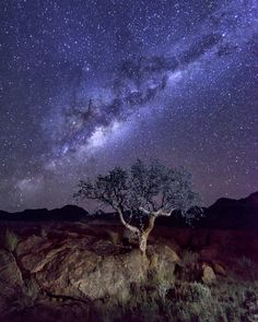 Milky Way and Night Sky of Namibia [OC] [1638x2048] - Posted by: ansharphoto