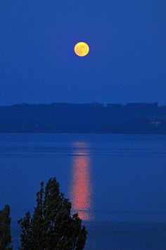 Moon rising over lake, Neuchatel, Switzerland - (CC)Emmanuel Keller (Tambako the Jaguar) - www.flickr.com/photos/tambako/4877029686/in/set-72157600225447304