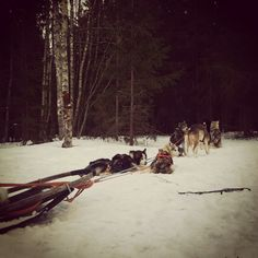 See 9 photos from 92 visitors to Varjakan venesatama (Oulunsalo). Finland, Four Square, Snow, Outdoor, Outdoors, Outdoor Games, The Great Outdoors, Eyes, Let It Snow