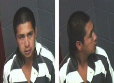Wanted - 29 yo Faulkner County, Conway, Arkansas - beat dog in head with a rock.  Call investigators 510-450-6130