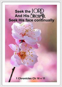 1 Chronicles 16:11 KJV Seek the Lord and his strength, seek his face continually.