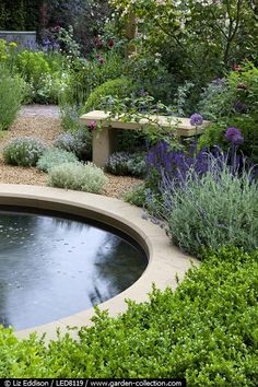 Beautiful round reflecting pool with herbs around it. A stone bench and pea stone.
