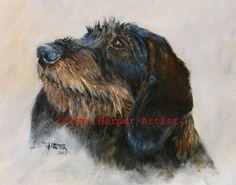 Standard Wirehaired Dachshund 1 Fine art dog by SusanHarperArts