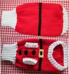manteau a tricoter pour chien ile ilgili görsel sonucu