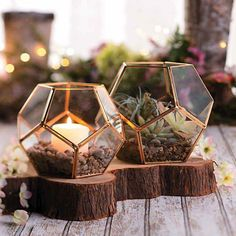 Wedding Flower gold-geometric-terrarium-candle-holders - Create beautiful wedding centerpieces with these terrariums! They're ideal for use as candle holders, or take a little more time and add your choice o . Budget Wedding Centerpieces, Succulent Wedding Centerpieces, Masquerade Centerpieces, Balloon Centerpieces, Quinceanera Centerpieces, Cheap Centerpiece Ideas, Black And Gold Centerpieces, Small Wedding Centerpieces, Rustic Candle Centerpieces