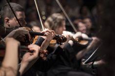 """Die Musik zu Goethes Trauerspiel """"Egmont"""" spielt das Staatsorchester Stuttgart bei seinem 7. Sinfoniekonzert. Am 09.07., ab 11 Uhr und am 10.07., ab 19.30 Uhr in unserem Beethoven-Saal. Mehr unter: https://www.oper-stuttgart.de/spielplan/5500/utopie-egmont-echos/"""