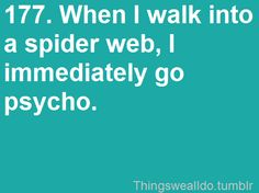 true...or...I'm waving my hand in front of me like a crazy person, trying to NOT walk into a web!