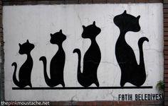 #Istanbul #street #cat #art