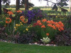 100_1673Perennial Garden, Wisconsin, Gardens, Landscaping, Clematis, Heuchera, Lilly, Garden Art | Flickr - Photo Sharing!