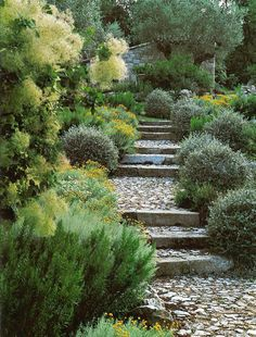 Staired path - St Paul de Vence