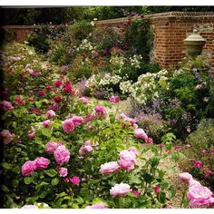 English Rose Garden designed by Michael Marriott ❤ liked on Polyvore