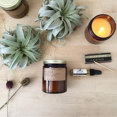 No. 11: Amber & Moss 7.5 oz soy candle from P.F. Candle Co. + Good Vibes oil from Moon River Naturals + giant airplants