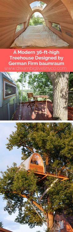A Modern 36'ft high Treehouse Designed by German Firm baumraum