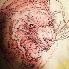 Tiger tattoo sketch Jeff Norton. Atascadero, CA www.jeffnortontattoo.com