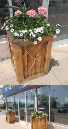 New planters out fro
