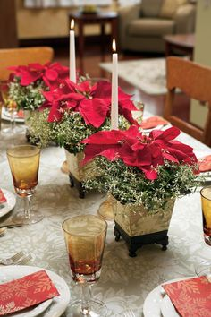 17 Lovely Ways to Display Poinsettias for the Holidays elegant christmas table decorations Christmas Table Centerpieces, Christmas Arrangements, Christmas Table Settings, Christmas Tablescapes, Xmas Decorations, Holiday Tablescape, Christmas Poinsettia, Christmas Flowers, Elegant Christmas