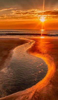 Golden-orange beach sunrise ~ All That Glitters by Parisa Salehi Orange Beach, Beautiful World, Beautiful Places, Beautiful Beautiful, Beautiful Sunrise, Jolie Photo, Ciel, Amazing Nature, Amazing Sunsets