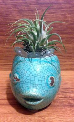 Tilla Critters Rasta Fish Mon One of a Kind Air Plant Creations from Chili Fiesta HandiWorks by CFHandiWorks on Etsy