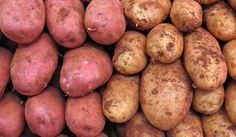 7 formas de cultivar patatas (papas) - http://jardineriaplantasyflores.com/7-formas-de-cultivar-patatas-papas/