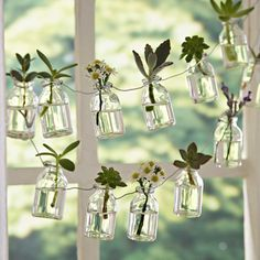 White Flowers Glass Bottle Garland bottle crafts 60 Creative DIY Glass Bottle Ideas for Your Outdoor Living Space Small Glass Bottles, Recycled Glass Bottles, Glass Bottle Crafts, Recycled Cans, House Plants Decor, Plant Decor, Hanging Plants, Indoor Plants, Air Plants