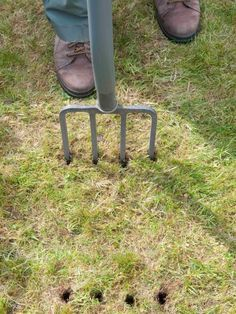 Learn about five types of lawn tools for aerating your outdoor space, keeping it in peak condition with this guide from HGTV.com.