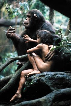 Growing up ape