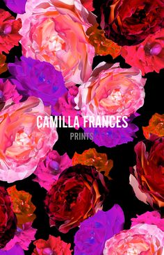 CFP STUDIO. Camilla Frances.