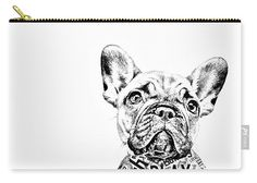 French Bulldog Portrait Acrylic Print by Marvin Blaine. All acrylic prints are professionally printed, packaged, and shipped within 3 - 4 business days and delivered ready-to-hang on your wall. Grey French Bulldog Puppy, French Bulldog Full Grown, French Bulldog Breeders, Collages, Portrait Acrylic, Portrait Art, Bulldog Puppies For Sale, Canvas Art, Canvas Prints