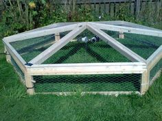 Guinea pig outdoor play-pen. I wish I had one of these for Lilly and Olive. We don't have a fence, so they only get to eat on tiny areas of grass at a time. This is such a good idea though.