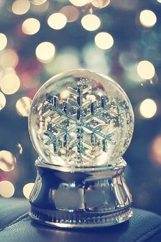 I just love snow globes.