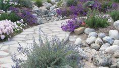 steingarten trockenheit tolerant wasser sparen