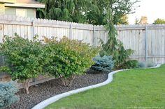 Landscaping. Concrete edging.