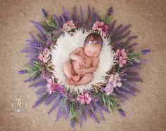 Newborn Baby Photos, Newborn Pictures, Baby Girl Newborn, Baby Pictures, Family Pictures, Baby Boy, Newborn Photography Poses, Newborn Baby Photography, Urban Photography
