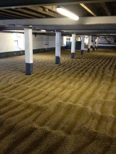 Laphroaig malting floor.