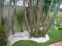 Como fazer um jardim simples e barato para sua casa