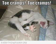funny cat caption toe cramps