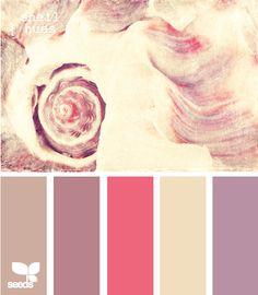 The subtle color of sea shells offer vibrant tones for decorating your coastal cottage