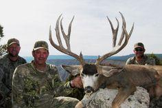 Would arizona strip deer hunt haze