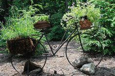 Bike plant holder at shade garden - Columbia Missourian