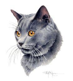 Chat gris PORTRAIT Art Print signée par l