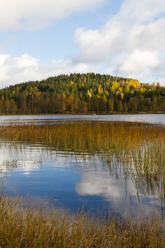 Autumn in Småland, Sweden