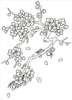 Japanese Cherry Blossom Tree Drawing Sketch Coloring Page Japanese Blossom, Japanese Tree, Japanese Flowers, Japanese Cherry Blossoms, Japanese Peony Tattoo, Japanese Tattoos, Cherry Blossom Drawing, Cherry Blossom Tree, Blossom Trees