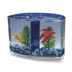 Have to have it. Betta Bow-Front 2-Compartment Fish Tank Kit $14.99